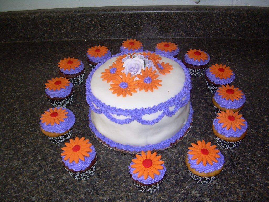 BIRTHDAY CAKE AND MATCHING CUPCAKES-